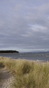 Findhorn Looking over to Culbin Forest