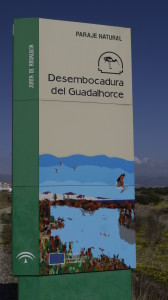 Entrance to the Rio Guadalhorce