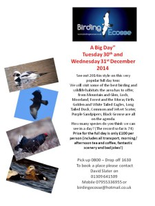 Join Birding Ecosse for a 2014 final fling!