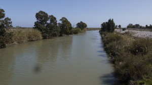 The Guadalhorce Canal.