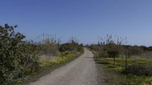 Guadalhorce Reserve