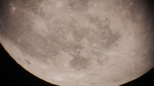 Moon showing impact marks
